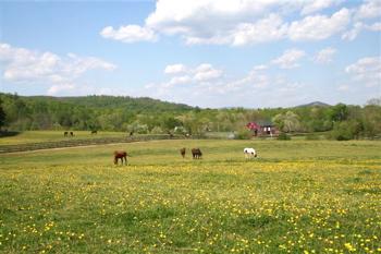 Rodes Farm-Weems