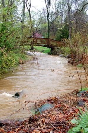 Rushing water Spruce Creek