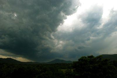 strober green cloud