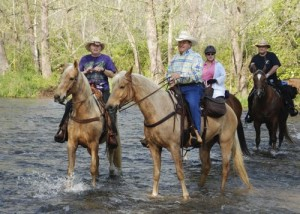 By Diana Garland : Fleetwood Trail Ride in April 2008