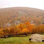 Wintergreen Nature Foundation : Fall Foliage Festival