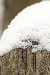 2008-03-13-b01-ptp-snow-pix-fin-0020-01