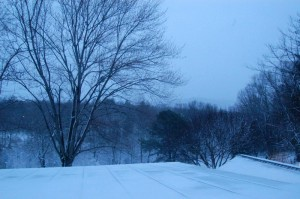 ©2009 NCL Magazine : Morning's first light revealed a beautiful blanket of snow covering Nelson County, Virgina and much of the east coast.
