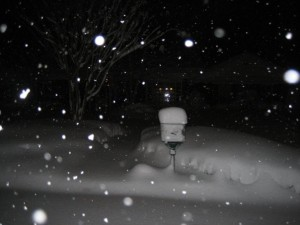 Photo Courtesy of Kathryn Norman ©2009 NCL Magazine : A shot in Western Tennessee (Lauderdale County) where as much as 18-20 inches fell in some areas.