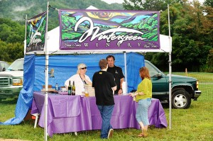 Brew Ridge Music Festival - 098