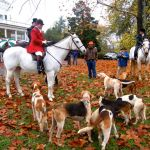 Oak Ridge Hunt Kicked Off Sunday In Spite Of Soggy Start : 11.2.09