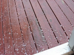 Photo By Kimmie Smith : ©2010 www.nelsoncountylife.com : Kimmie Smith of Shipman shot this picture of pea sized hail falling late Sunday afternoon as thunderstorms moved through that part of Nelson County. Click to enlarge.