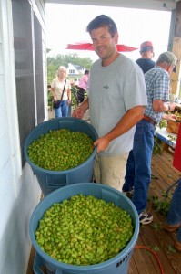 Taylor Smack at Blue Mountain this past August 2010 during their annual hop harvest on the grounds at the brewery.