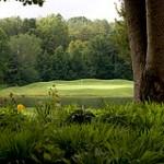 Springtime at Stoney Creek Golf Course