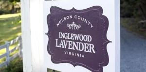 Inglewood Lavender Farm, Nelson Co., VA. Photo by Hayley Osborne.