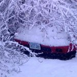 Major Snowfall Hits Central Virginia Blue Ridge Area
