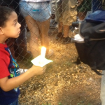 Family & Friends Turn Out In Support Of Missing Alexis Murphy At Candlelight Vigil