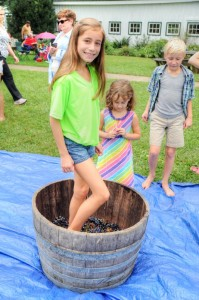 ©2013 Blue Ridge Life Magazine : Photos By BRLM Mountain Photographer Paul Purpura : A youngster stomps the grapes at the annual Romp, Stomp and Chomp Harvest Celebration held this past Labor Day weekend 2013 at Wintergreen Winery just south of Nellysford, VA