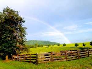 John McKeithen over at Mountain Area Realty grabbed this beautiful photo Saturday afternoon - September 6, 2014 - along Stagebridge Rd in Eastern Nelson County. Showers & storms moved through bringing cooler temps.