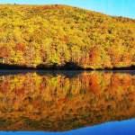 Beautiful Colors Still Popping Across The Blue Ridge