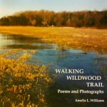 Poetry Reading from walking Wildwood Trail: Poems & Photographs