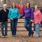 Albemarle : Hope's Legacy Equine Rescue Purchases Property Near Batesville