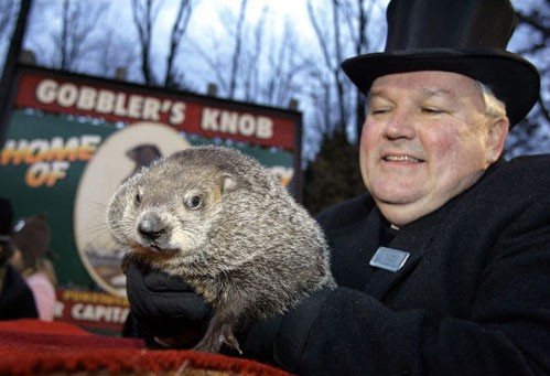 The meddling groundhog up in Pennsylvania