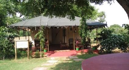 Orchard Resort Pushkar review