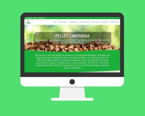 Página Web Pellets Cantabria