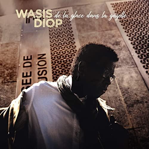 Wasis Diop - De La Glance Dans La Gazelle