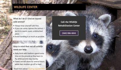 Wildlife-header-image-Capture