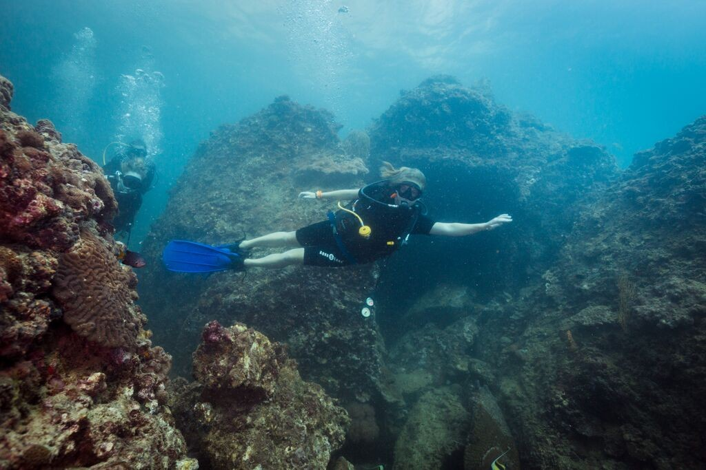 PADI specialty Diving padi open water diver course