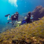 open water course, dive courses, koh phi phi, padi