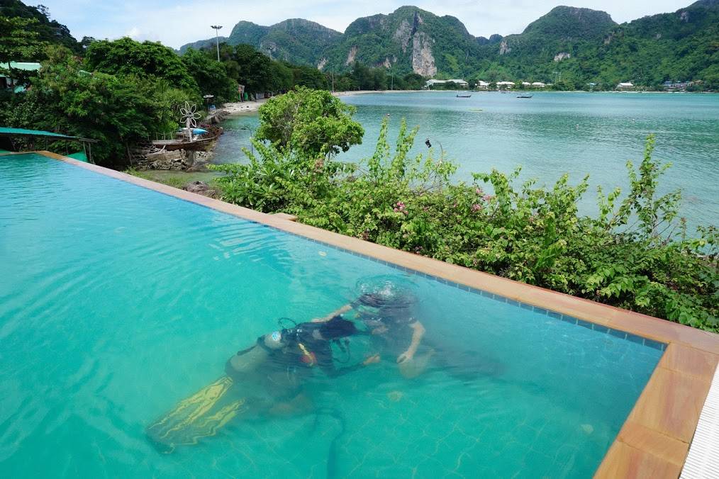 viewpoint resort pool scuba diving koh phi phi