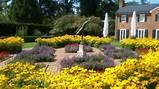 Gardens that surround the Glen Burnie House
