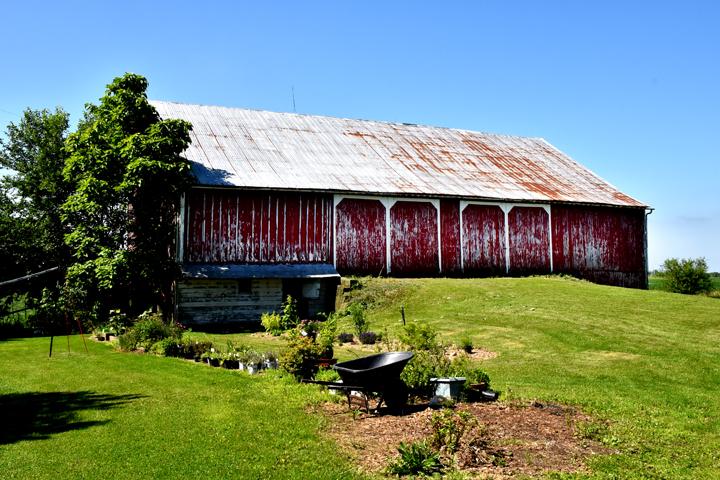 Bank barn at Basinger property