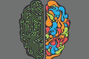 Coding blumate informatica