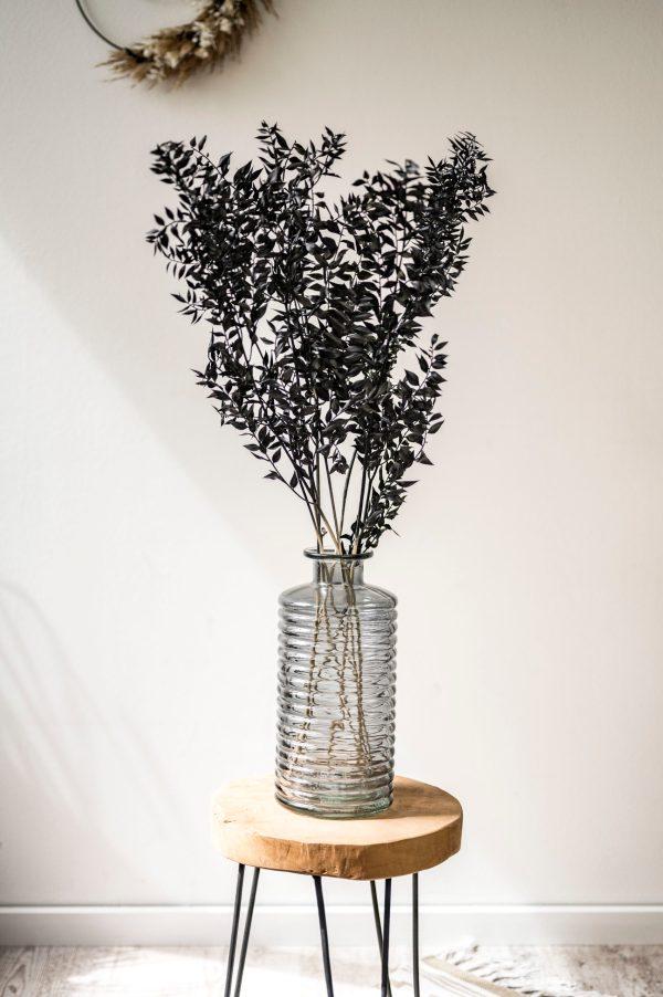 schwarzer ruscus in vase