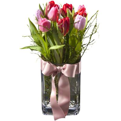 Tulpenprinzessin - Blumen Bergmann