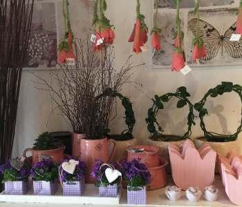 Blumendeko u Blumenarrangements