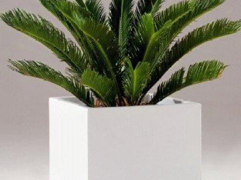 blumenkübel weiß fiberglas-blumenk�bel block wei�