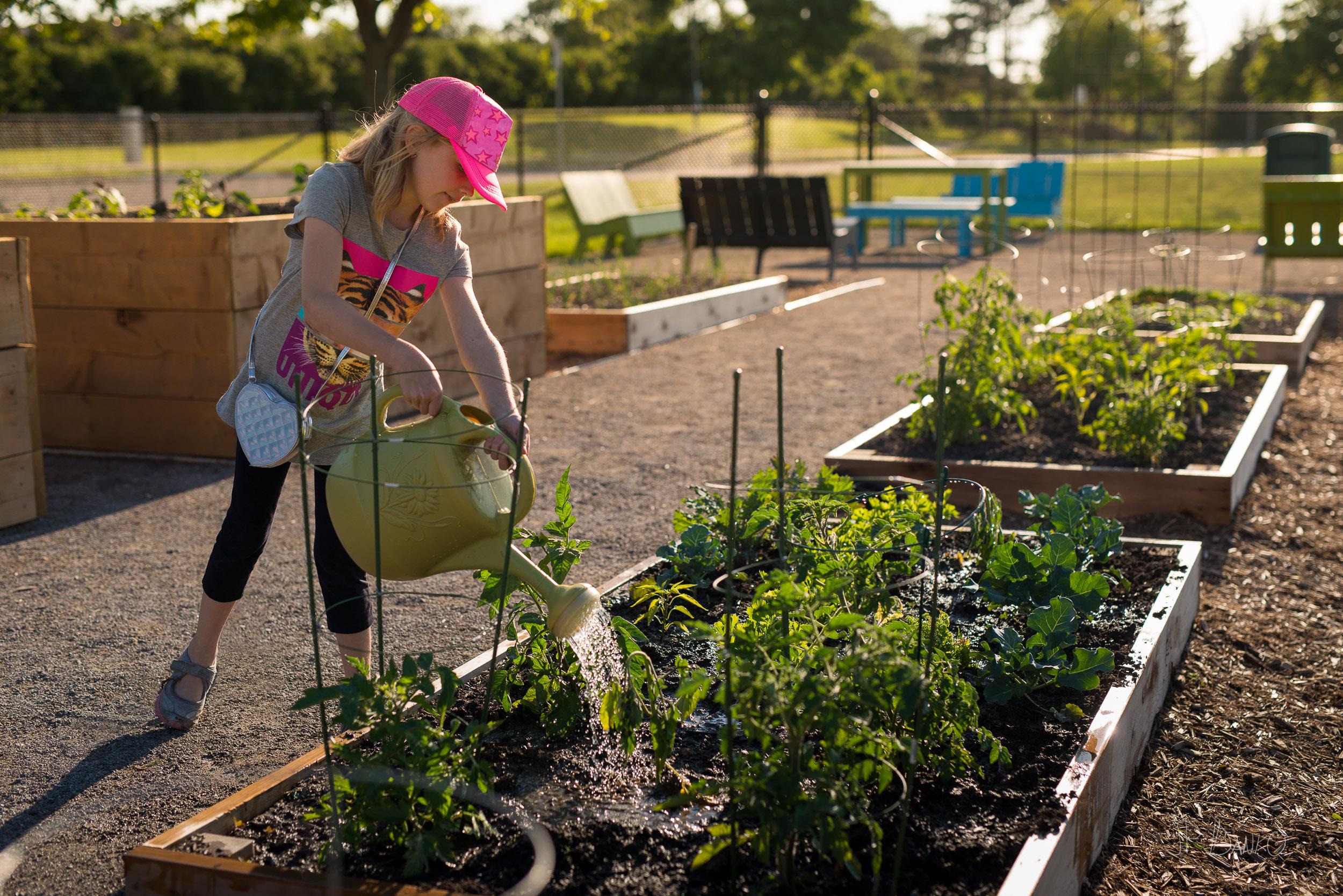 Spring Vegetable Garden - Hamilton Community Garden at Mohawk ...