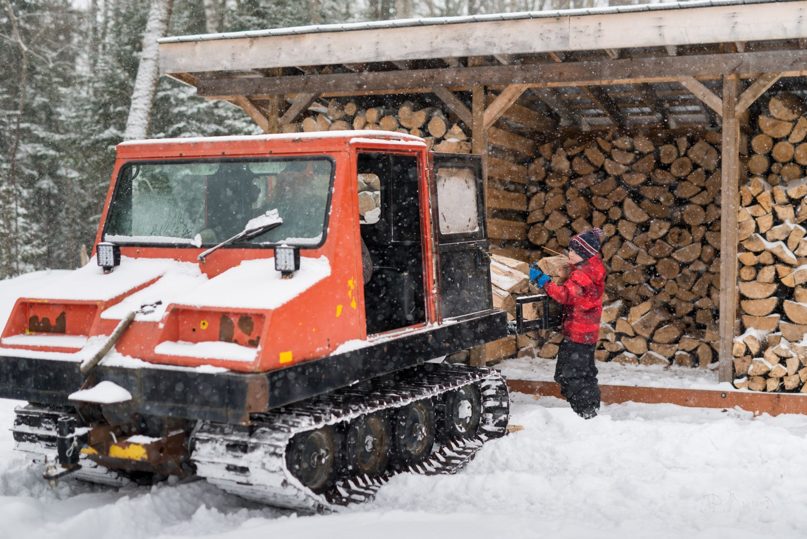 Snow falls as boy moves firewood from wood shed to bed of snow groomer machine
