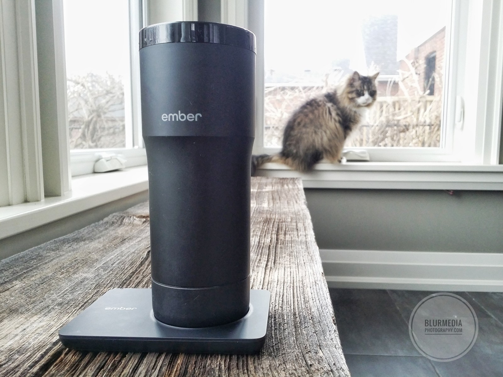 Ember Temperature Control Travel Mug Review
