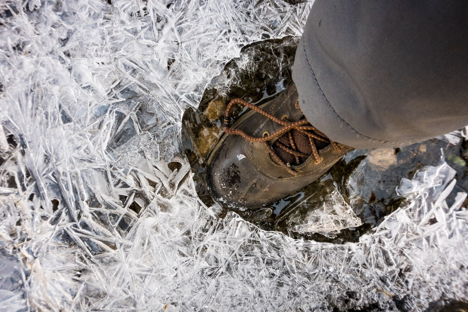 Boot breaks through thin layer of ice as planet warms