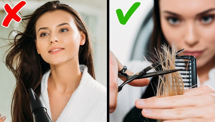 6 Best Methods To Repair The Damaged And Bleached Hair 1