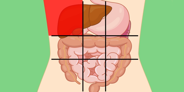 6 Belly Map Shares By The Doctor That Would Tell The Reason Why Your Stomach Is Hurt 1