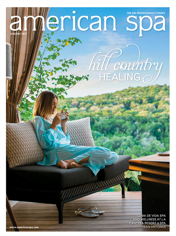 American Spa Cover Jan 2017
