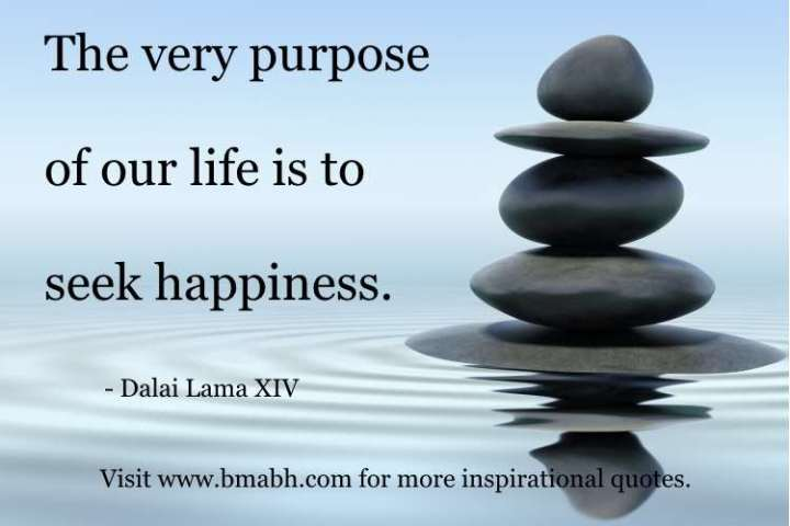 Dalai Lama Quotes On Life picture-The very purpose of our life is to seek happiness
