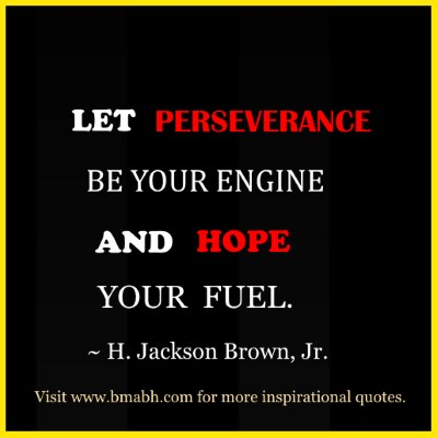 quotes about perseverance-Let perseverance be your engine and hope your fuel