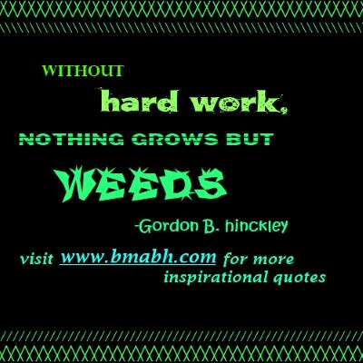 hard work quotes picture-Without hard work, nothing grows but weeds