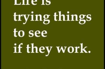 Life is trying things to see if they work