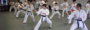 Karate & Taekwondo Lessons in Eugene