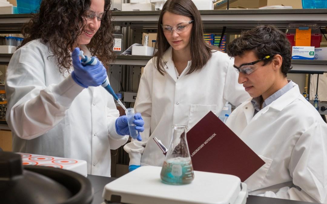 Groundbreaking nanotherapeutic research