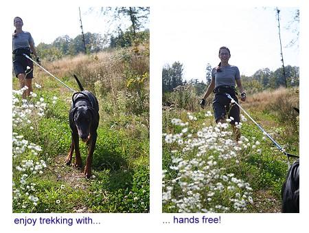 DogTrekking-4